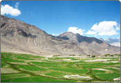 Nubra Valley Tour