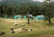 Patnitop Hill Station Tour