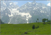 Sonmarg Tourism